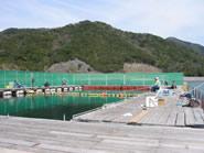 海上釣り堀 正徳丸